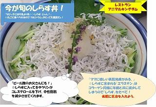 しらす丼JPG.jpg