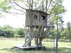 ツリーハウス.JPGのサムネール画像