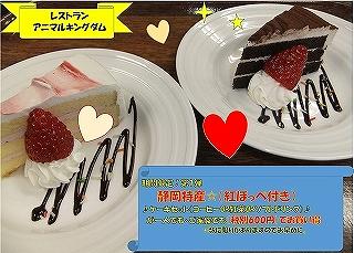 縮小ブログケーキ(各種).jpg