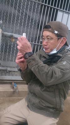 s-獣医.jpg